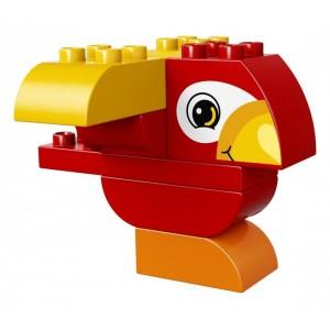 «Моя первая птичка» 10852
