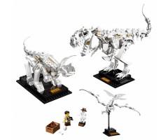 21320 Кости динозавра