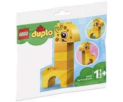 30329 Мой первыцй жираф