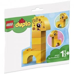«Мой первыцй жираф» 30329
