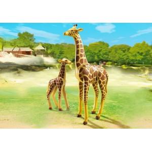 «Жираф со своим детенышем жирафом» PM6640