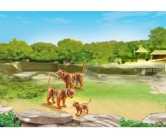 PM6645 Семья Тигров