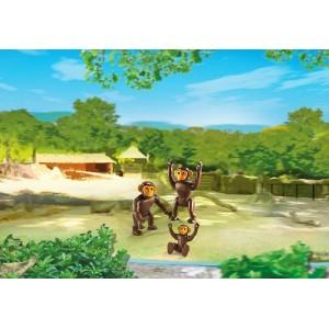 «Семья Шимпанзе» PM6650