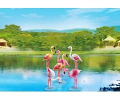 PM6651 Стая Фламинго