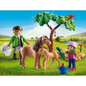 «Ветеринар с пони и жеребенком» PM6949