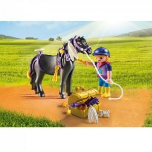 «Конюх с Пони Звездочка» PM6970