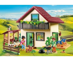 PM70133 Сельский дом