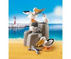 PM9070 Семья пеликанов