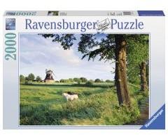 RV16635 Сельский пейзаж