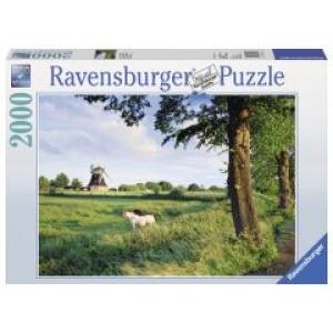 «Сельский пейзаж» RV16635